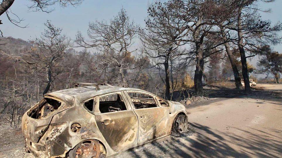 ΠΥΡΚΑΓΙΑ ΕΥΒΟΙΑ: Κρανίου τόπος το δάσος Natura που κάηκε – ΦΩΤΟΓΡΑΦΙΕΣ