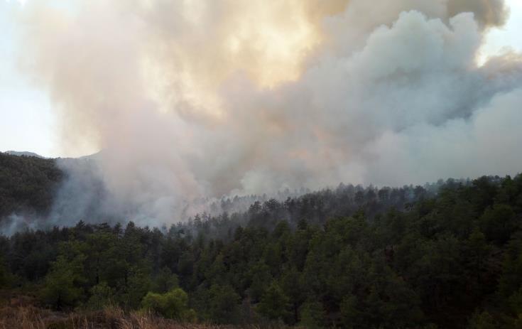 ΛΕΜΕΣΟΣ – ΠΥΡΚΑΓΙΑ: Υπό έλεγχο η φωτιά ανάμεσα σε Καντού και Σούνι